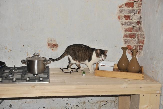 We zijn de volgende reeks keukenkastjes gaan halen het eerste